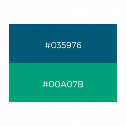 Turing Trust branding - colour